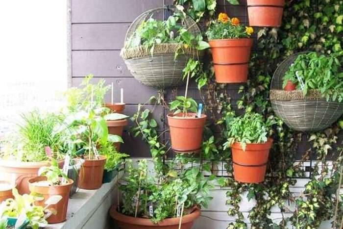 Jardin suspendu pour balcon ou terrasse