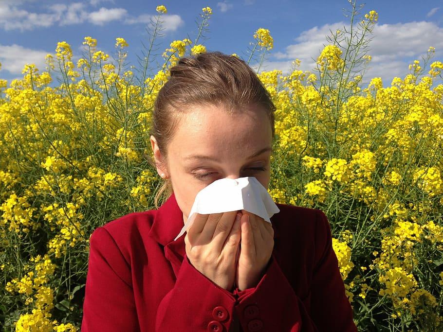 allergenes pollen